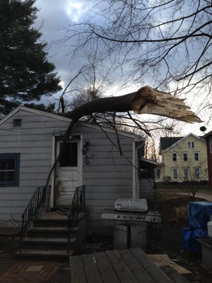 A tree fell on Lisa Schwingle's rental home in Pittsford. Her landlord is working to repair it
