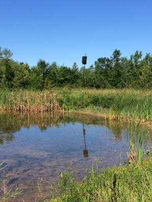 A bat houses overlookis one of Gary Legois' ponds.