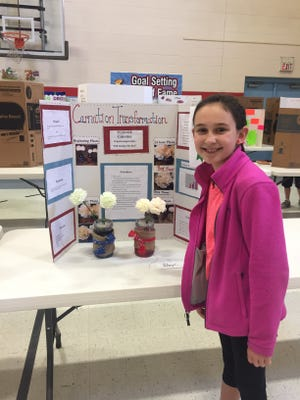 Third place in the science fair at SES went to Riley Cunningham for her project investigating the effects of water temperature on carnations.