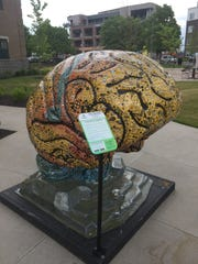 12 brain sculptures are on display in Fishers to highlight mental illness