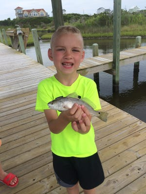 Tommy Springer's son holds a red drum during an impromptu ichthyology lesson while on vacation.