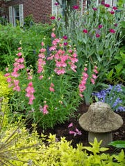 Colorful perennials are tucked among the hostas in