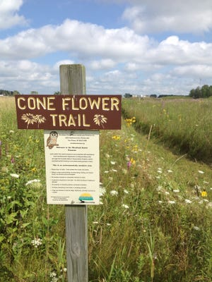 Cone Flower Trail at Woodland Dunes Nature Center and Preserve in Two Rivers.