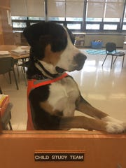 Hope, (pictured here) is mentored by Skye, the Commercial Township School District's first certified therapy dog.