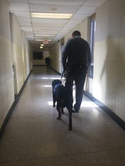 Commercial Township School District Daniel Dooley walks Skye down a corridor at Haleyville Mauricetown School on Feb. 8, 2018.