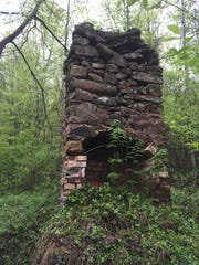 Spring growth surrounds a chimney from an old home site near a completed portion of Lakeshore Drive in the North Shore area of Great Smoky Mountains National Park. There were several communities in the North Shore area before it became part of the park in the 1940s.
