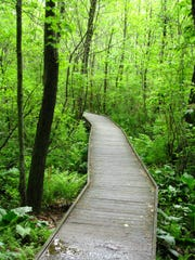 Great Swamp Outdoor Education Center, 247 Southern Boulevard, Chatham.