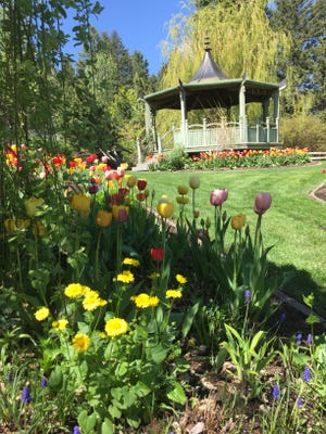 Flowers bloom at the Bibler Home and Gardens.