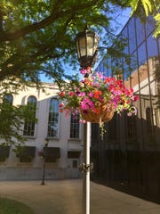 The Garden Club of York provided hanging baskets, which were placed throughout the downtown as part of the annual beautification effort.