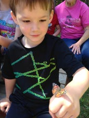 A boy watches a butterfly that landed on his hand.