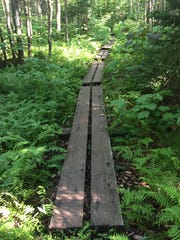 One of dozens of The Long Trail's deck paths, installed to traverse May's mud season.