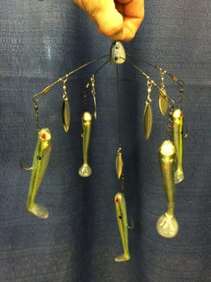"""Strike King Titanium Tour Grade Umbrella Rig with 1/8 ounce Squadron Jig heads rigged with 4.5"""" Shadalicious swimbaits."""