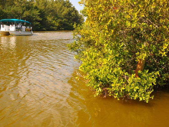 Wildside Tours heads to the dock at Ramp Road in Cocoa