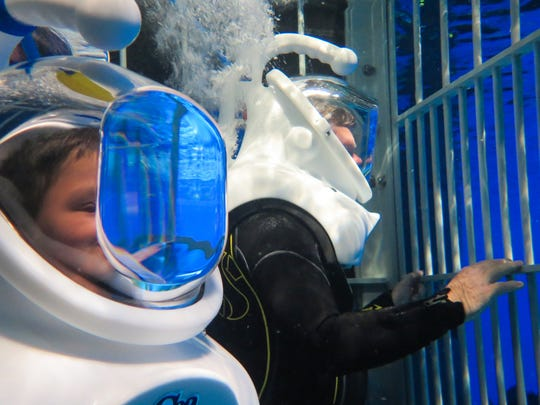 News-Leader reporter Wes Johnson (right) tries out Wonders of Wildlife's newest attraction, the Out To Sea Shark Dive, where visitors don wetsuits, diving helmets and climb inside a shark cage that takes you into the aquarium's shark tank.