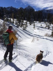REN_BACKCOUNTRY_DOG05.jpg