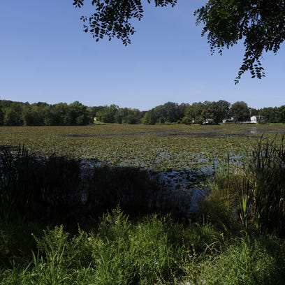 Voters dissolve Hillside Lake taxing district