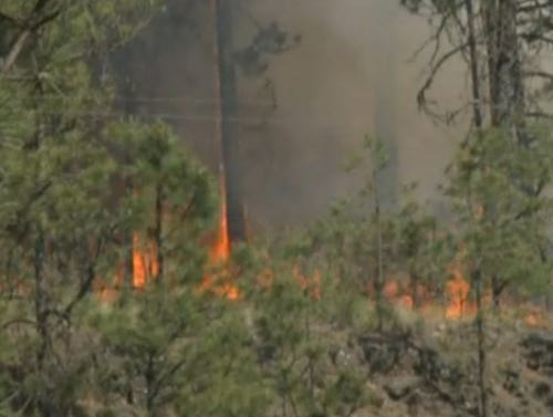 145 acre Cheney wildfire 50% contained