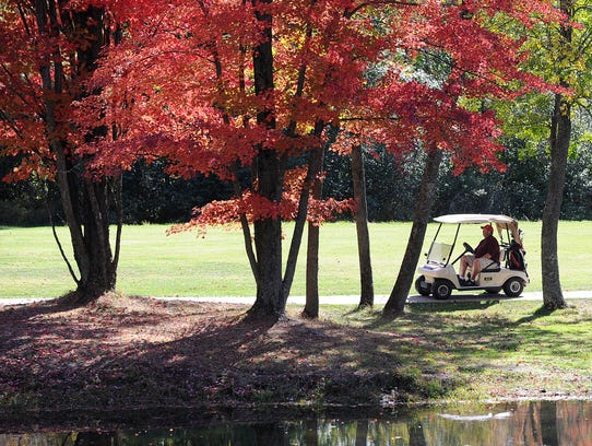 Tim Blokhuis of Wisconsin Rapids drives his golf cart