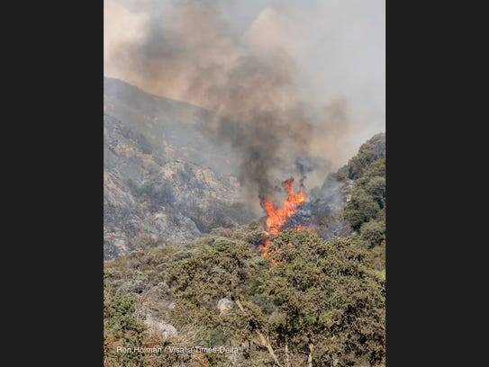 Flames flare up as firefighters from the U.S. Forest