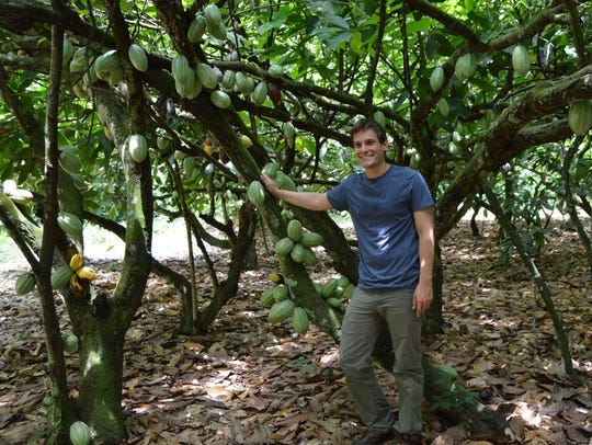 Andrew Fister, postdoctoral scholar in plant science,