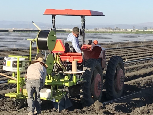 Farm workers use a tractor on a field outside Salinas. The American Civil Liberties Union says a report on the pesticide chlorpyrifos' dangers needed to go much further in its analysis of the risks to farm laborers.