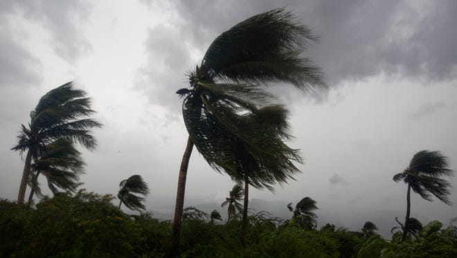 Wind blows coconut trees during the passage of Hurricane Matthew in Port-au-Prince, Haiti, on Tuesday, Oct. 4, 2016.