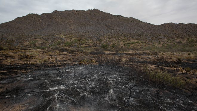 The Organ Fire has charred the west side of Mineral Hill, The blaze is now being fought on the west side of the hill by BLM and WSMR fire crews. Friday June 29, 2018.
