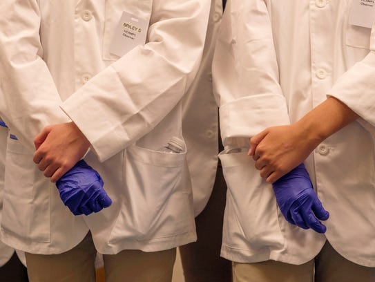 Donning rubber gloves on their right hands, participants