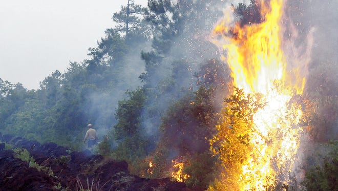 This is a file photo of a forest fire. The Wolf Creek Fire in the Pisgah National Forest near Old Fort has grown to 200 acres.