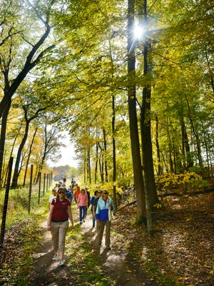 Participants walk along the Old St. Joe Road trail in 2015 during the Times Media Meditation Walk at St. John's Abbey Arboretum.