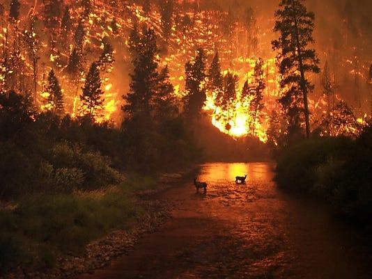 EarthTalkWildfires.JPG
