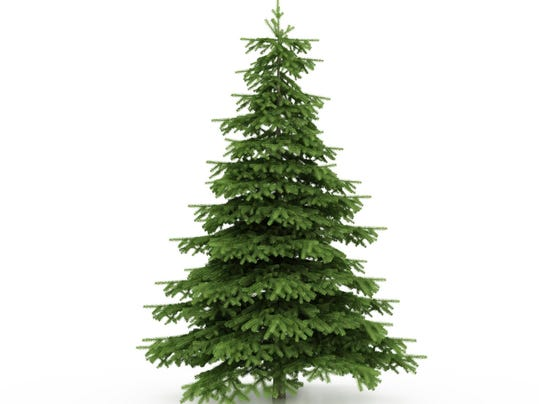 LBL offers free cedar Christmas Trees