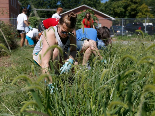 In August, Drury University students volunteered to work at the former Fairbanks Elementary building, which includes a community garden.
