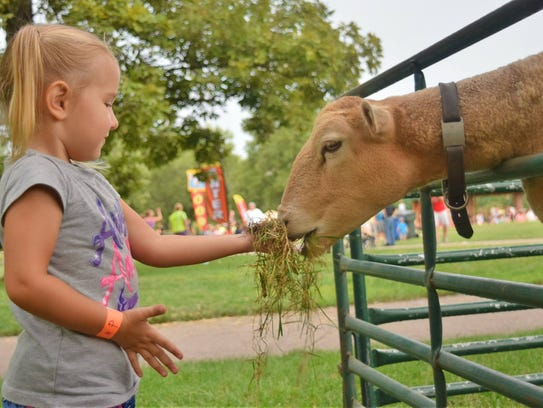 The Honey Hill Petting Zoo is popular during FamilyFest