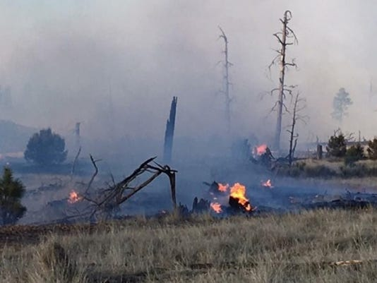 100 acre wildfire burning in eastern Arizona