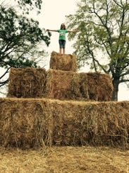 Fall into the season at Batey Farms, 3250 Wilkinson