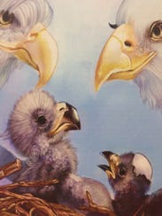 One of the illustrations in Karen Lippy's newest eagle