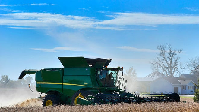 Nick Schumacher, owner/operator of Schumacher Farms who also runs a custom combining business, combines soybeans on the 750-acre Jon Hansmeier farm Sunday, Oct. 2, near Foley. Hansmeier said he's been happy with the harvest so far, averaging about 60 bushels of soybeans per acre.