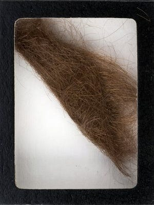 """This photo provided by Heritage Auctions shows a 4-inch lock of hair that was collected by a German hairdresser who trimmed John Lennon's hair before he started shooting """"How I Won the War."""" Heritage Auctions says the lock of hair is expected to sell for $10,000 at a Dallas auction later this month."""