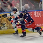 At home, all's Well with the Swamp Rabbits