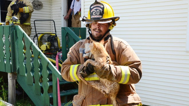 Ephraim firefighter Tim Penchoff takes one of seven cats away from the scene of Sunday's fire.
