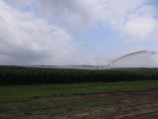 A center pivot manure irrigation system is used to