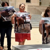 Humane Society Protest