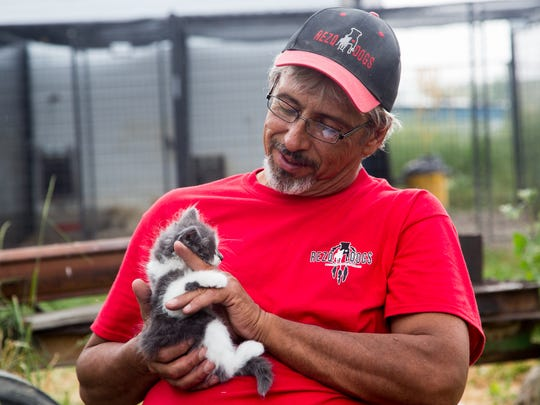 Jim Wilke plays with Fido, a kitten that has fallen under the care of RezQ Dogs at his home and current site of the shelter.