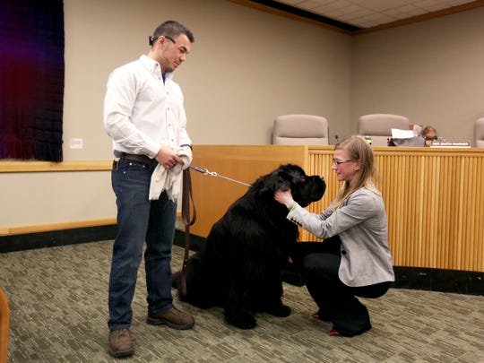 Bradlee Davis holds onto Olga as Administrator Erin Seiler greets the six-month-old Newfoundland puppy, following a House interim rules committee meeting at the Oregon State Capitol on Thursday, Jan. 14, 2016.
