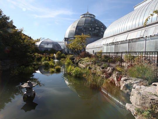 The Koi pond at Anna Scripps Whitcomb Conservatory on Belle Isle Thursday, September 25, 2014.