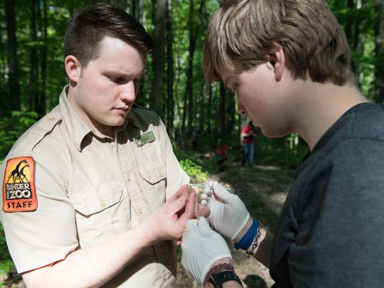 Binder Park Zoo Keeper P.J. Konz holds a salamander
