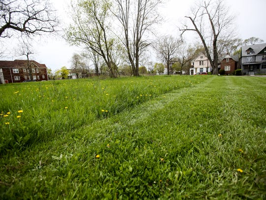 An empty parcel of land owned by the city of Detroit