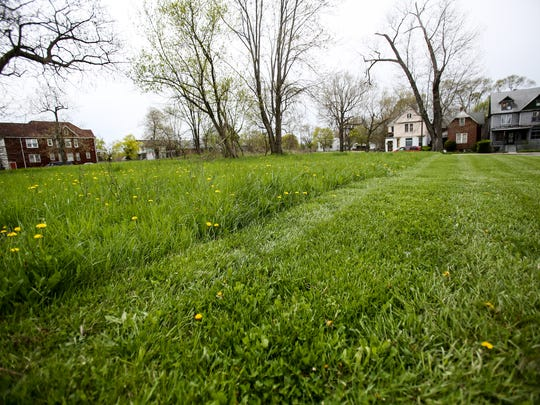 An empty parcel of land owned by the city of Detroit that Mike Score, president of Hantz Farms, wants to purchase sits overgrown next to a lot maintained and owned by Hantz Farms where Hantz Woodlands are located.