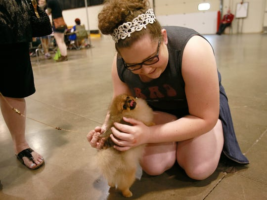 Rose Chiodo, 13, of Clarkston says hi to Olivia, a Pomeranian, during the Detroit Kennel Club dog show at Suburban Showcase Collection in Novi, Mich. on Sunday, June 26, 2016.
